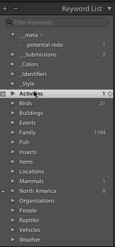 Keyword list in Lightroom