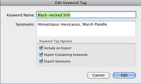 Edit Keyword Tag window in Lightroom