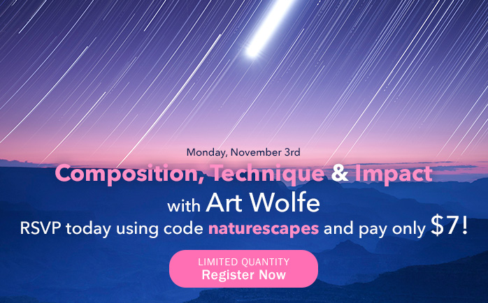 Monday, November 3rd - Composition, Technique and Impact with Art Wolfe. RSVP today using code naturescapes and pay only $7!