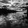 Blue Cypress Lake sunset black and white © Nikhil Bahl